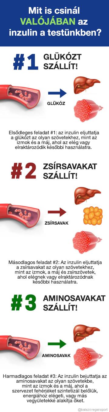 Reggeli Edzés Éhgyomorra - Vajon több Zsírt égetünk?   ikonkartya.hu