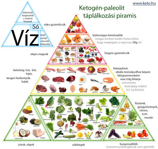 protein diéta mintaétrend
