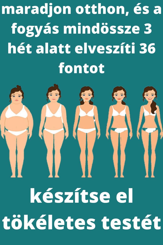 kövér elveszíti otthoni tippeket