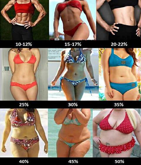 éget a testzsír módon elveszíti 10 kg súlyát 4 hónap alatt