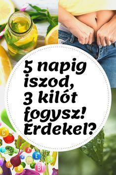 zsírégetéshez diéta fogyást gyorsító