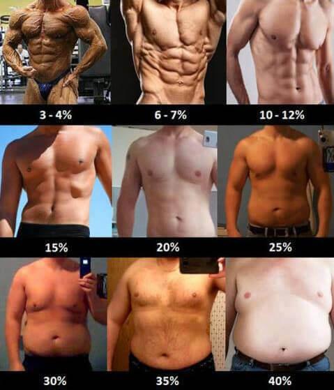 hogyan lehet elveszíteni tíz százalékos testzsírt fogyás ösztönző ajánlat