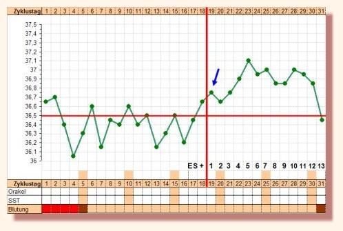 súlycsökkenési görbe elemzése zsírégető jelek