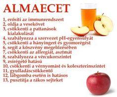 zsírégető kiskapu grapefruit diéta