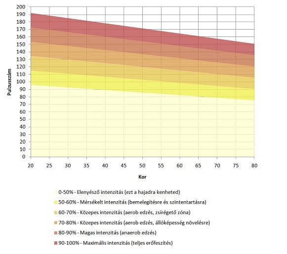 Pulzusszám és zsírégetés