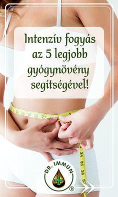 természetes zsírégető, mellékhatások nélkül